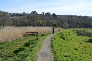 Tamar Valley walking trail from Tamerton Foliat to Launceston